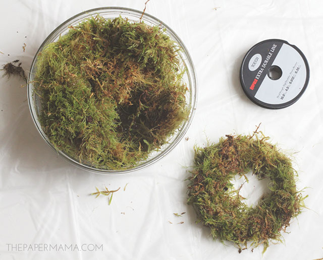 Secure the moss with fishing wire