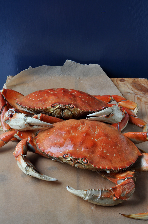 Fresh dungeness crab with three dipping sauces for Three crabs fish sauce